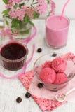 Schwarze Johannisbeere Eiscreme mit Smoothie Stockfotografie