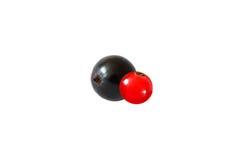 Schwarze Johannisbeere und rote Johannisbeere lokalisiert auf weißem Hintergrund stockfotos