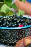 Schwarze Johannisbeeren in einem Teller auf der Feiertagstabelle Lizenzfreie Stockfotografie