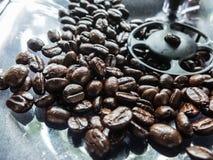 schwarze Kaffeebohne in der Kistenmaschine Lizenzfreie Stockbilder