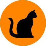 Schwarze Katze Stockfotografie