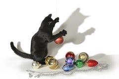Schwarze Katze auf einem weißen Hintergrund, der mit Spielwaren spielt Lizenzfreies Stockfoto