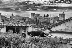 Schwarze Katze, das Alhambra und der drastische Himmel in Granada, Spanien, 04/26/2017 Schwarzweiss-Foto Pekings, China Lizenzfreie Stockbilder