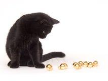 Schwarze Katze, die mit Weihnachtsverzierungen spielt Stockbild
