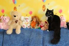 Schwarze Katze, die nahe bei Spielwaren sitzt Stockfotografie