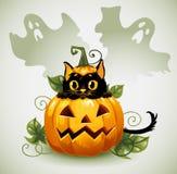 Schwarze Katze in einem Halloween-Kürbis und einem Geist. Lizenzfreie Stockbilder