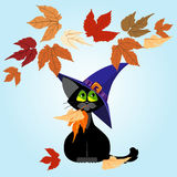 Schwarze Katze in einem lila Hut Autumn Leaves vektor abbildung