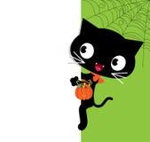 Schwarze Katze Halloweens und eine weiße Fahne Stockfoto