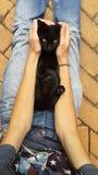 Schwarze Katze in meinen Armen Stockfotografie