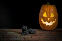 Schwarze Katze mit Jack-O-Laterne lizenzfreies stockbild