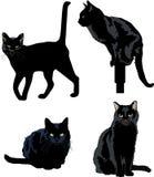 Schwarze Katzen stock abbildung