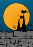 Schwarze Katzen auf der Wand Stockbild