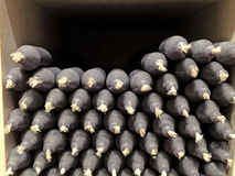 Schwarze Kerzen auf einem Souvenirladen Lizenzfreies Stockfoto