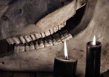 Schwarze Kerzen und Abschluss oben des Pferdeschädels Stockfotos