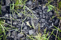 Schwarze Kohle, lang gelassen auf Erde lizenzfreie stockfotografie