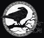 Schwarze Krähe, die auf einer Niederlassung einer Eiche sitzen, und skandinavische Runen, geschnitzt in Stein stock abbildung