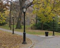 Schwarze Laternenpfähle und gefallene Blätter auf Central Park, New York Stockfoto