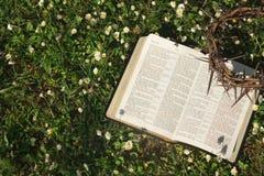 Schwarze lederne Bibel und Dorn krönen auf einem Blumenfeld Stockfotos