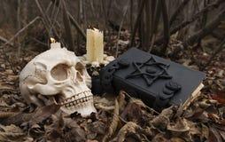 Schwarze Magie im Wald Stockbilder