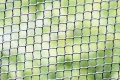 Schwarze Maschenfiletarbeit auf grünem Hintergrund Stockbilder