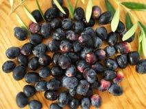 Schwarze Oliven auf Holz Stockbild