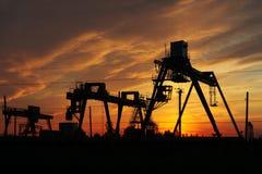 Schattenbilder der Kräne am Sonnenuntergang Lizenzfreie Stockfotos