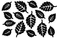 Schwarze Schattenbilder von spitzen Blättern Stockbild