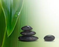 Schwarze Steine und grünes Blatt Lizenzfreies Stockbild