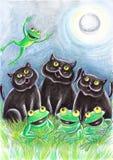Schwarze Streukatzen mit Fröschen Stockbilder