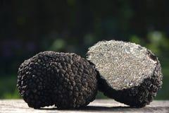 Schwarze Trüffelnahaufnahme mit natürlichem Hintergrund stockfotos