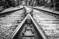 Schwarze u. weiße braune auseinanderlaufende Bahnstrecken stockbild