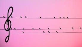 Schwarze Vögel armony mit Bass-- Schlüssel-pemthagram Lizenzfreies Stockfoto