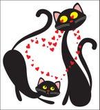 Schwarze verliebte Katzen Stockbild