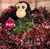 Schwarzer Affe mit dem glänzenden Lametta und einem glänzenden Ba des neuen Jahres Stockfotos