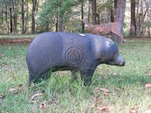 Schwarzer Bär, der draußen Ziel jagt lizenzfreie stockfotografie