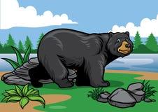 Schwarzer Bär in der Natur Lizenzfreies Stockfoto