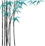 Schwarzer Bambus lizenzfreie abbildung