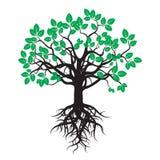 Schwarzer Baum mit grünen Blättern und Wurzeln Lizenzfreie Stockfotos
