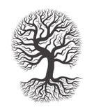 Schwarzer Baum mit Wurzel Stockfotografie