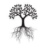 Schwarzer Baum mit Wurzeln Auch im corel abgehobenen Betrag Stockfotografie