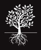 Schwarzer Baum und Wurzeln Stockfotografie