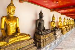 Schwarzer Buddha zwischen goldenem Buddhas Stockbilder