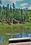 Schwarzer Canyon See, Navajo County, Arizona, Vereinigte Staaten, staatlicher Wald Apache Sitegreaves Lizenzfreies Stockfoto