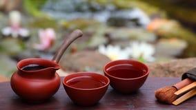 Schwarzer chinesischer Teesommergarten stock video footage