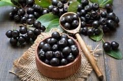 Schwarzer Chokeberry in der hölzernen Schüssel Stockbild