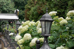 Schwarzer dekorativer Laternenpfahlstand im Park Stockbilder