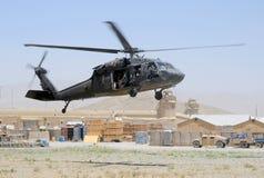 Schwarzer Falke, der im Kampfgebiet sich entfernt Lizenzfreie Stockfotografie