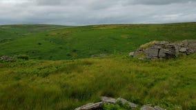 Schwarzer Felsen u. x28; Süd-Dartmoor& x29; , Süd-Brent, Nationalpark Dartmoor Lizenzfreies Stockbild