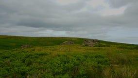 Schwarzer Felsen u. x28; Süd-Dartmoor& x29; , Süd-Brent, Nationalpark Dartmoor Stockfotos