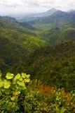 Schwarzer Flussberg in Mauritius Stockfotografie
